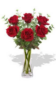 Bursa orhangazi internetten çiçek siparişi  6 kırmızı gül vazosu