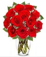 12 adet vazoda kıpkırmızı gül  çiçekçiler Bursa online çiçek gönderme sipariş