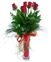 vazo içerisinde 5 kırmızı gül  Bursa iznik hediye sevgilime hediye çiçek
