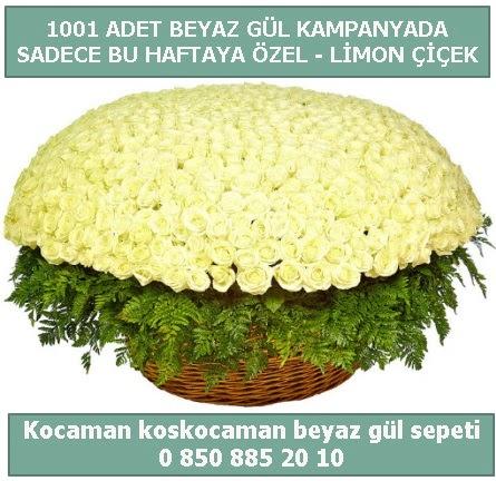 1001 adet beyaz gül sepeti özel kampanyada  çiçek siparişi Bursa karacabey çiçek yolla