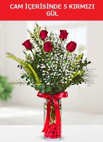 Cam içerisinde 5 adet kırmızı gül  Bursa çiçek gönder nilüfer çiçek siparişi vermek