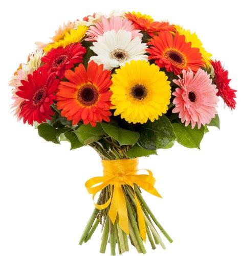 Gerbera demeti buketi  Bursaya çiçek yolla orhangazi çiçek satışı
