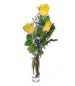 Bursa inegöl kaliteli taze ve ucuz çiçekler  3 adet kalite cam yada mika vazo gül