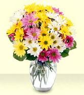 Bursa inegöl kaliteli taze ve ucuz çiçekler  mevsim çiçekleri mika yada cam vazo