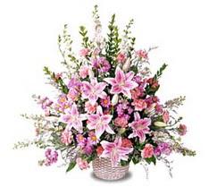 Bursa çiçek gönder nilüfer çiçek siparişi vermek  Tanzim mevsim çiçeklerinden çiçek modeli