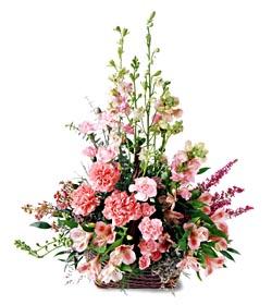 online Bursa ucuz çiçek gönder  mevsim çiçeklerinden özel