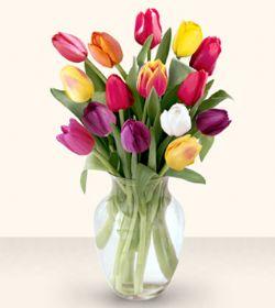 çiçek yolla Bursa orhaneli çiçekçiler  13 adet cam yada mika vazoda laleler