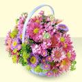 cicekciler Bursa gemlik güvenli kaliteli hızlı çiçek  bir sepet dolusu kir çiçegi  çiçek siparişi Bursa karacabey çiçek yolla