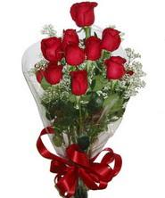 9 adet kaliteli kirmizi gül   Bursa çiçek satışı kestel uluslararası çiçek gönderme