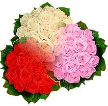 3 renkte gül seven sever   Bursada çiçekçi osmangazi çiçek , çiçekçi , çiçekçilik