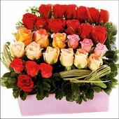 15 adet renkli gül ve cam   Bursa orhangazi internetten çiçek siparişi