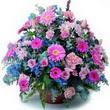 karisik mevsim kir çiçekleri  çiçek siparişi Bursa karacabey çiçek yolla