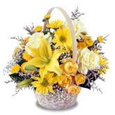 sadece sari çiçek sepeti   çiçek siparişi Bursa karacabey çiçek yolla