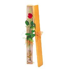 ince  kutuda  1  gül   Bursa çiçek yolla nilüfer çiçek gönderme