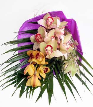Bursa çiçek gönderimi nilüfer cicekciler , cicek siparisi  1 adet dal orkide buket halinde sunulmakta