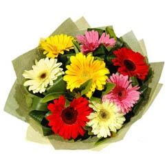 9 adet karisik gerbera demeti  cicekci Bursa inegöl çiçek mağazası , çiçekçi adresleri