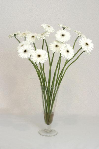 cicekci Bursa inegöl çiçek mağazası , çiçekçi adresleri  cam vazo içerisinde 17 adet sade gerbera