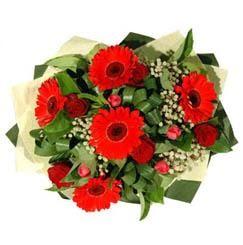 online Bursa ucuz çiçek gönder   5 adet kirmizi gül 5 adet gerbera demeti