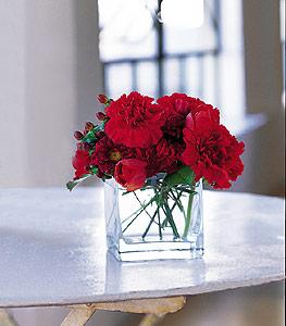 online Bursa ucuz çiçek gönder  kirmizinin sihri cam içinde görsel sade çiçekler