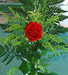 1 adet kirmizi gül buketi   çiçek Bursa yenişehir çiçekçi mağazası