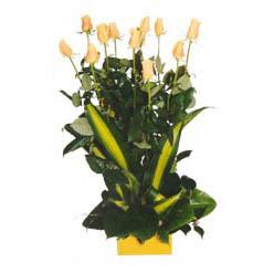 12 adet beyaz gül aranjmani  çiçek siparişi Bursa nilüfer anneler günü çiçek yolla