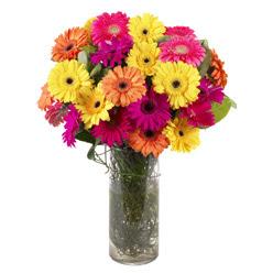 KARISIK GERBERALARDAN CAM VAZO TANZIMI  Bursa iznik hediye sevgilime hediye çiçek