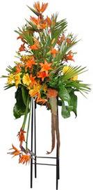 Bursa çiçek gönder nilüfer çiçek siparişi vermek  perförje tanzimi dügün nikah ve açilislara