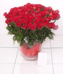 çiçekçiler Bursa online çiçek gönderme sipariş  101 adet kirmizi gül