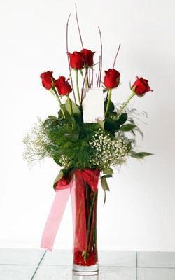 Bursa çiçek gönderimi nilüfer cicekciler , cicek siparisi  6 adet kirmizi gül ve cam yada mika vazo