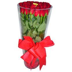 cicek Bursa iznik çiçek online çiçek siparişi  12 adet kirmizi gül cam yada mika vazo tanzim
