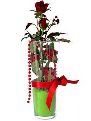 Bursa ya çiçek yolla mudanya cicek , cicekci  Cam yada mika içerisinde 9 adet kirmizi gül - sevdiklerinize özel