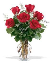 çiçek siparişi Bursa karacabey çiçek yolla  7 adet kirmizi gül cam yada mika vazoda sevenlere