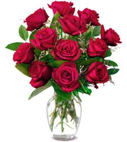 Bursa ya çiçek yolla mudanya cicek , cicekci  1 düzine kirmizi gül sevenlere özel vazo gülleri