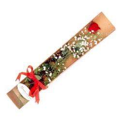Bursada çiçekçi osmangazi çiçek , çiçekçi , çiçekçilik  Kutuda tek 1 adet kirmizi gül çiçegi