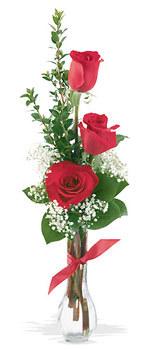 Bursa çiçek gönderimi nilüfer cicekciler , cicek siparisi  mika yada cam vazoda 3 adet kirmizi gül