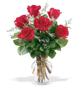 Bursa çiçek gönderimi nilüfer cicekciler , cicek siparisi  cam yada mika vazoda 6 adet kirmizi gül