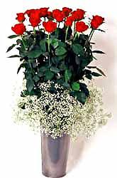 çiçekçiler Bursa online çiçek gönderme sipariş  9 adet kirmizi gül cam yada mika vazoda