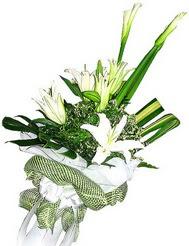 Bursa iznik hediye sevgilime hediye çiçek  3 dal kazablanka çiçegi ve yesillikler