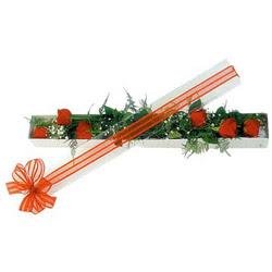 Bursa çiçek gönder nilüfer çiçek siparişi vermek  6 adet kirmizi gül kutu içerisinde