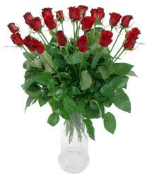 Bursa çiçekçi osman gazi çiçek gönderme sitemiz güvenlidir  11 adet kimizi gülün ihtisami cam yada mika vazo modeli