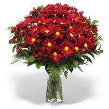 Bursa çiçek yolla nilüfer çiçek gönderme  Kir çiçekleri cam yada mika vazo içinde