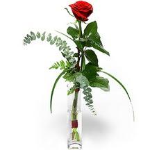 Bursa çiçek siparişi karacabey 14 şubat sevgililer günü çiçek  Sana deger veriyorum bir adet gül cam yada mika vazoda