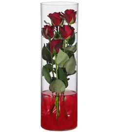 cam içerisinde 7 adet kirmizi gül  çiçek yolla Bursa orhaneli çiçekçiler