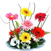 çiçekçi Bursa nilüfer hediye çiçek yolla  camda gerbera ve mis kokulu kir çiçekleri