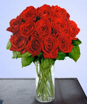 Anneme 12 adet cam içerisinde kirmizi gül  Bursa çiçek gönder nilüfer çiçek siparişi vermek
