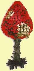 Bursa çiçek nilüfer İnternetten çiçek siparişi  dügün açilis çiçekleri  cicek Bursa iznik çiçek online çiçek siparişi