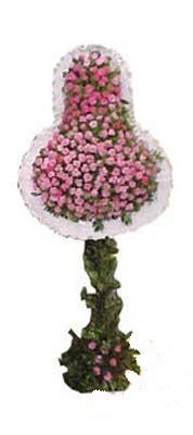 online Bursa ucuz çiçek gönder  dügün açilis çiçekleri  Bursa inegöl kaliteli taze ve ucuz çiçekler
