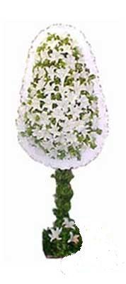 Bursa çiçek gönder nilüfer çiçek siparişi vermek  nikah , dügün , açilis çiçek modeli  Bursa ya çiçek yolla mudanya cicek , cicekci