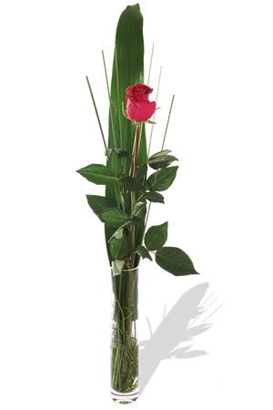 1 adet cam vazo içerisinde kirmizi gül  Bursada çiçekçi osmangazi çiçek , çiçekçi , çiçekçilik