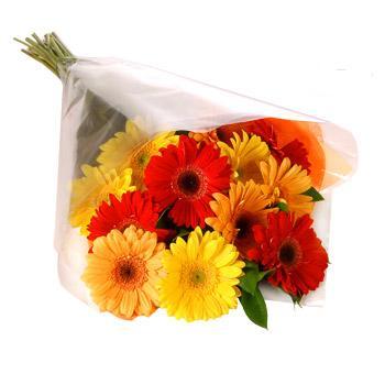 Karisik renklerde gerbera buketi  Bursa çiçek gönderimi nilüfer cicekciler , cicek siparisi